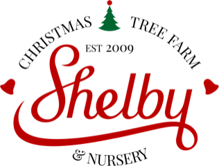 Shelby Christmas Tree Farm & Nursery